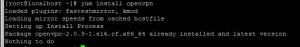 yum install openvpn